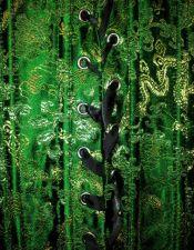 Corsets sexys en color verde